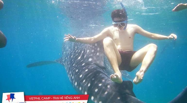 Chuyến trải nghiệm lặn cùng cá mập voi tại Oslob của các bạn trại viên VietPhil Camp